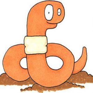 Verne the Worm illustration